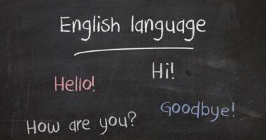 cercare un corso di lingua online