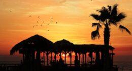 LAVORARE ALLE HAWAII – OFFERTE DI LAVORO PER INSEGNARE ALLE HAWAII