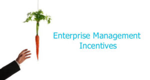 Entertprise Management Scheme