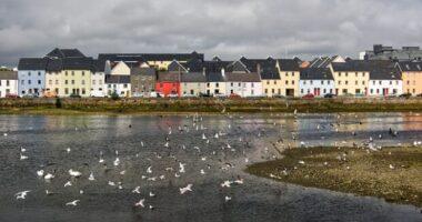 Corsi di lingua a Galway