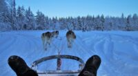 Informazioni utili per trasferirsi a vivere in Finlandia