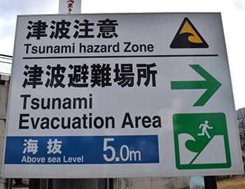 sopravvivere alle catastrofi